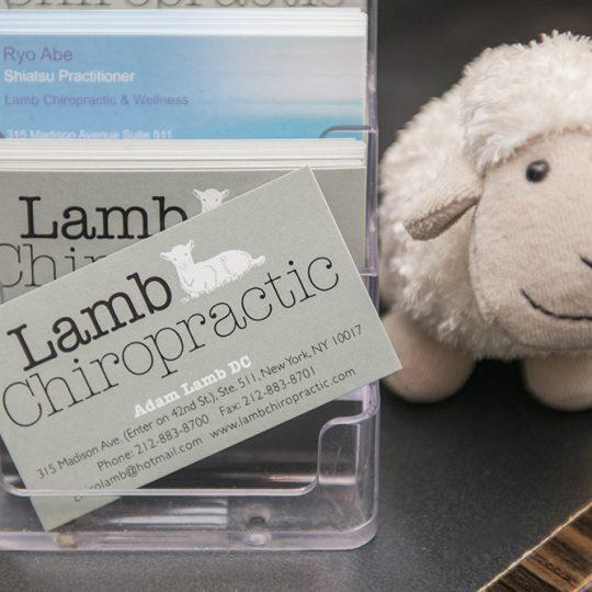 Adam Lamb Neck Adjustment